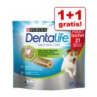 1 + 1 gratis! 2 x Purina Dentalife Snacks