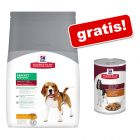 Grote zak Hill's Science Plan droogvoer + 6 x 390 g blik Hill's Science Plan natvoer gratis!