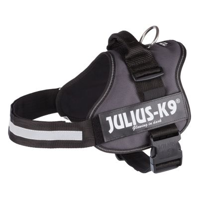 Harnais JULIUS-K9® Power, anthracite pour chien