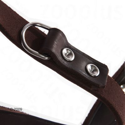 Heim Riveted Dog Lead - Brown