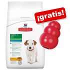 Hill's Science Plan Canine Mini 6,5 a 7,5 kg + KONG Classic S ¡gratis!