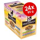 Hill's Ideal Balance 24 x 85 g pour chat