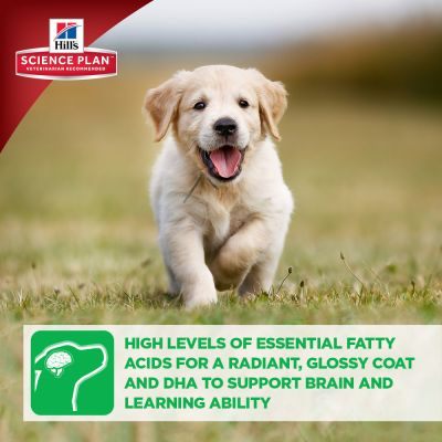 Hill's Puppy Healthy Development Large Breed with Chicken