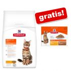 Hill's Science Plan Feline + 12 x 85 g Hill's umido gratis!
