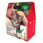 Hill's Science Plan Kitten - Pack de inicio