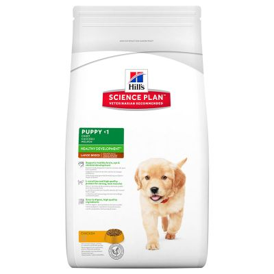 Hill's Science Plan Puppy Healthy Development Large Breed mit Huhn
