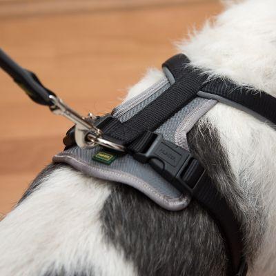 40e10d083256 Hunter Neopren Σαμαράκι Σκύλων