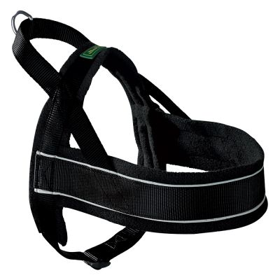 Hunter Norwegian Racing Dog Harness