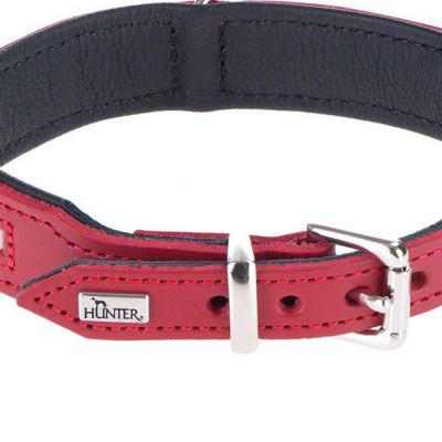 Hunter Swiss Dog Collar