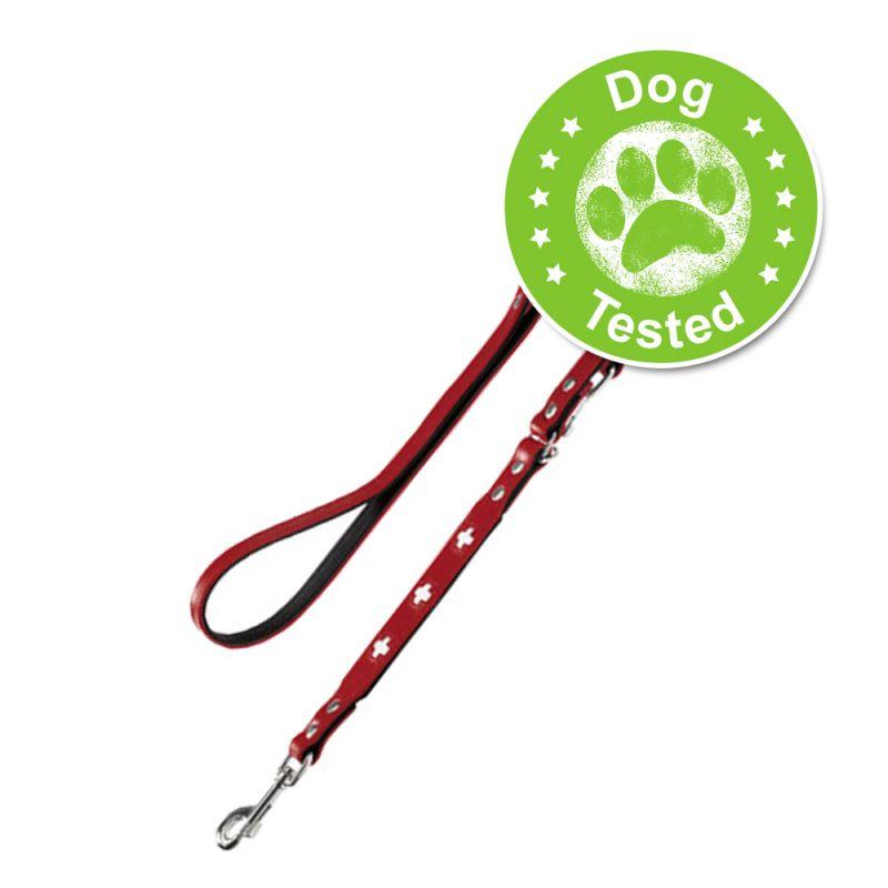 Hunter Swiss Dog Lead