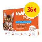 IAMS Delights Adult in Jelly 36 x 85 g