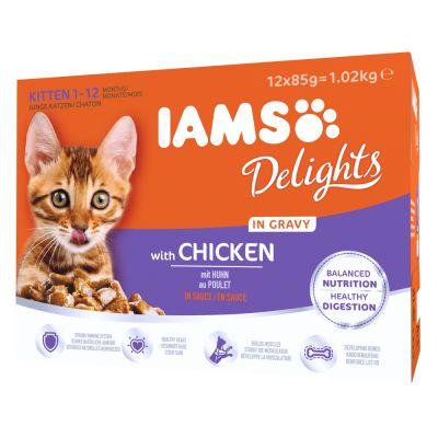 IAMS Delights Kitten – Chicken in Gravy | Free P&P £29+ at ...