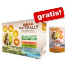 IAMS Naturally Cat Adult Mix, 12 x 85 g + karma sucha IAMS, 700 g gratis!