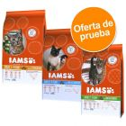 IAMS Pro Active Health Adult 3 x 3 kg - Pack de prueba