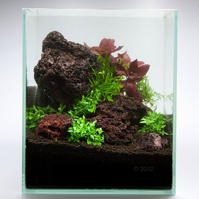 Icelandic Lava Rock Aquarium Decoration Free P Amp P 163 29