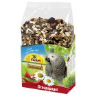 JR Birds Individual Grey Parrot Food