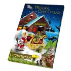 JR Farm Grainless Advent Calendar για Μικρά Ζώα
