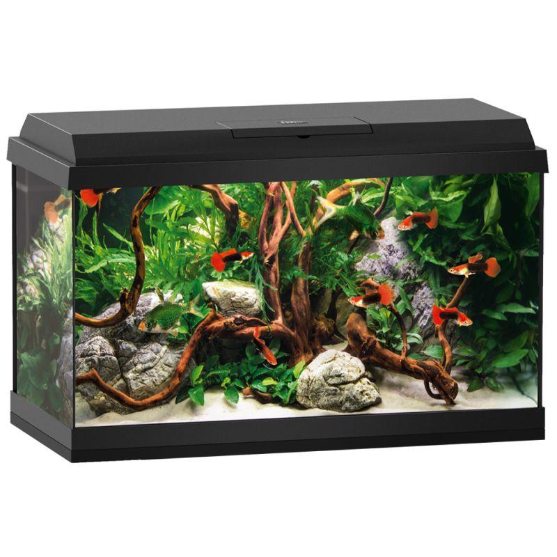 juwel primo 60l novolux led black aquarium starter set. Black Bedroom Furniture Sets. Home Design Ideas