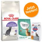 Kennenlernpaket: 2 kg Royal Canin Sterilised 37 + 400 g Concept for Life und 300 g Hill's
