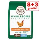 8 + 3 kg Δωρεάν! 11 kg Nutro Wholesome Essentials Adult
