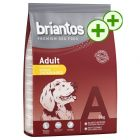 3kg Briantos Dry Dog Food - Double Points!*