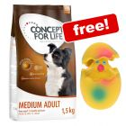 1.5kg Concept for Life Dry Dog Food + Latex Squeaker Egg Dog Toy Free!*