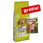 2,5 kg Purina Dog Chow tørfoder + 1 x AdVENTuROS Sticks gratis!