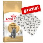 10 kg Royal Canin Breed + Fleecedecke Pawty gratis!