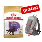 12 kg Royal Canin Breed + Royal Canin nahrbtnik gratis!
