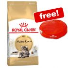 10kg Royal Canin Dry Cat Food + Cat Cushion Free!*