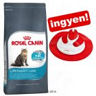 10 kg Royal Canin + Royal Canin Cat Massage Center ingyen!