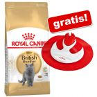 10 kg Royal Canin torrfoder för katt + Cat Massage Center på köpet!
