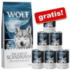12 kg Wolf of Wilderness + karma mokra, 6 x 400 g gratis!