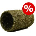 15% korting! JR Farm Hooi-Tunnel