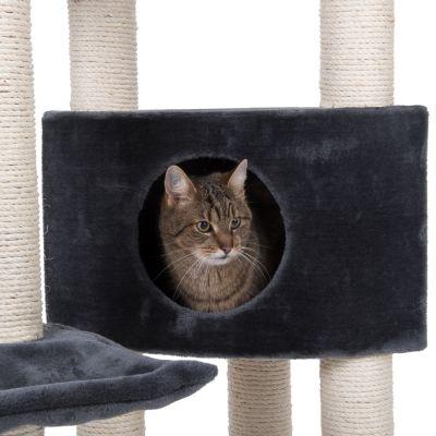 Veľká pozeral mačička diera