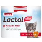 Lait pour chaton Beaphar Kitty-Milk