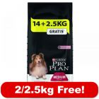 Large Bags Purina Pro Plan Dog Food + 2kg/2.5kg Extra Free!*