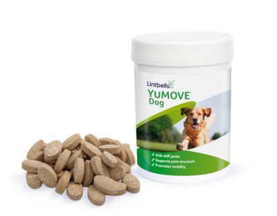 Lintbells YuMOVE Dog Supplement