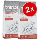 Lot Briantos Protect + Care pour chien