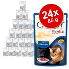 Lot Animonda Carny Exotic 24 x 85 g pour chat
