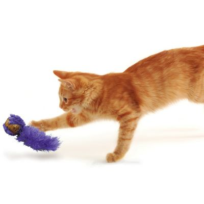 4212faecaf5bff Jouet Kong pour chat - zooplus.be  Lot de jouets pour chat KONG