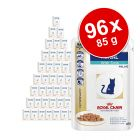 Lot Royal Canin Veterinary Diet 96 x 85/100 g pour chat
