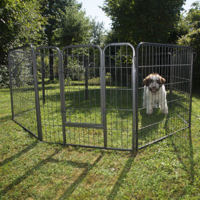 Metal Run for Small Pet & Puppies – 8 Sided