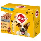 Multipack Pedigree Vital Protection Patè Pollo & Manzo