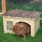 Nature Plus Small Pet House with Hay Rack