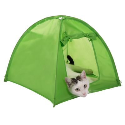 Niche Kitty Camp