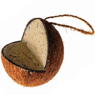 Noix de coco fourrée de graisse - Nourriture pour oiseaux sauvages ... 0389fafee91c