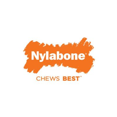 Nylabone DuraChew Femur Alternative Bacon