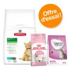 Offre découverte chaton Hill's Science Plan + Royal Canin + Concept for Life