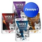 Offre découverte Wolf of Wilderness Adult